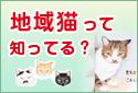 地域猫って知ってる?
